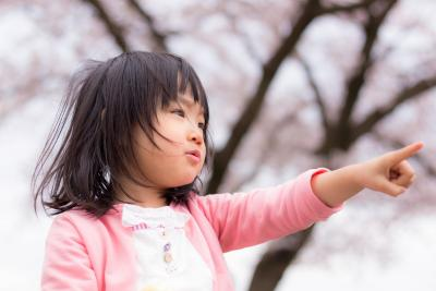 MIWA木場公園保育園の求人イメージ