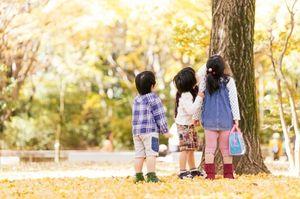 社会福祉法人こころ福祉会 いけぶくろこころ保育園イメージ