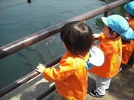 東京都認証保育所 マミーズエンジェル上池台保育園イメージ