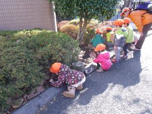木下の保育園 狛江(狛江、狛江市)【2788】の求人イメージ