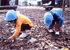 のぼりっこ保育園イメージ