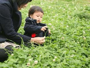 社会福祉法人 白鳩会 平井保育園の求人イメージ