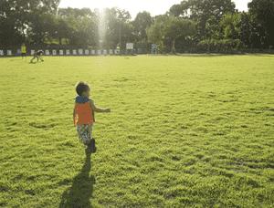 アスク向ヶ丘遊園南保育園の求人イメージ